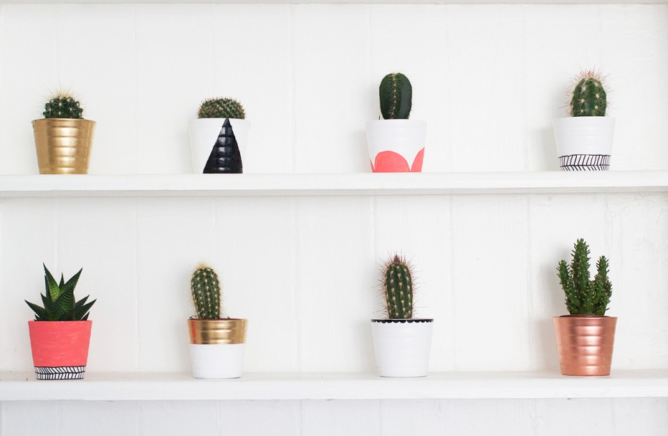 diy painted cacti pots kate la vie. Black Bedroom Furniture Sets. Home Design Ideas