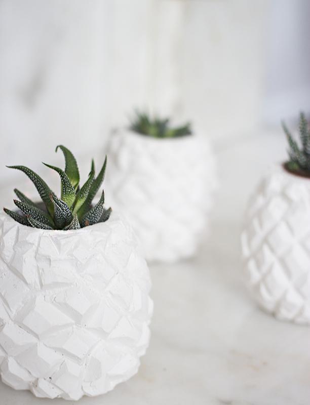 pineapplepot2